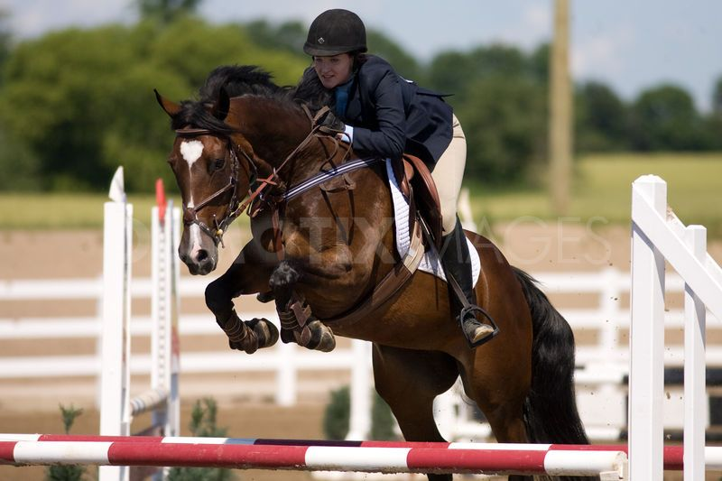 Horse Jumping Stock Photos, Images, & Pictures - 6,909 Images