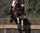 Clarke Johnstone, FEI World Cup Eventing