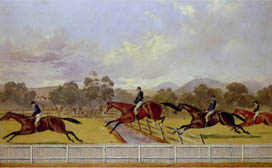Thumbnail for The Steeplechase
