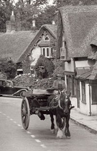 Mail cart - Isle of Wight.