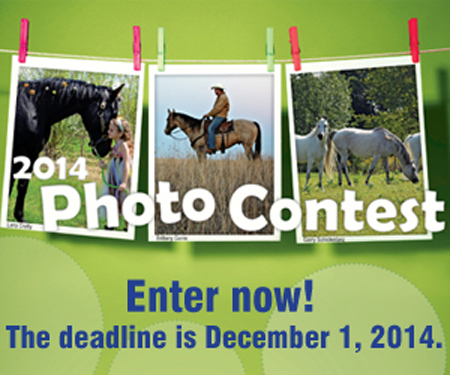 Thumbnail for PhotoContest2014_400