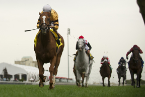 Jockey John Velazquez guides Wise Dan