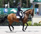 Ashley Holzer and Tiva Nana won the FEI Grand Prix Special CDI 3* on final day of 2014 AGDF. Photo by SusanJStickle.com.