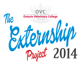 Thumbnail for OVC's 2014 Externship Project