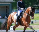 Diane Creech and Chrevis Christo won the FEI Advanced Level High Point Award at the Kentucky Dressage Association Spring Warm-Up and 28th Annual Show.