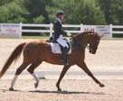 Diane Creech and Devon L danced to first place in the Grand Prix Freestyle at CDI-W Cornerstone Spring Into Dressage. Photo by Michael Werner Images