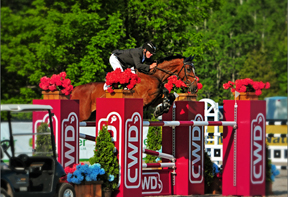 Hugh Graham and Airborne won the $40,000 FEI Grand Stakes Class at Angelstone Farms.