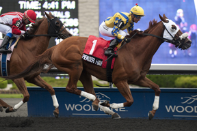Jockey Luis Contreras guides Pender Harbour to victory in the $125, 000 Steady Growth stakes at Woodbine. Photo by Michael Burns Photography