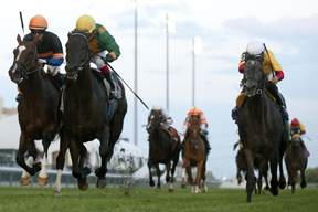 Justin Stein guides Silent Star to victory in the $125,000 Victoriana Stakes at Woodbine. Photo by Michael Burns Photography