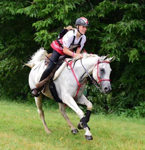 Thumbnail for Canadian Endurance Rider Finishes in Fourth at NAJYRC