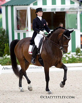 The Canadian Dressage Team's anchor rider, Belinda Trussell of Stouffville, ON is part of the top 30 invited to move forward to the Grand Prix Special on August 27 at the Alltech FEI World Equestrian Games 2014 in Normandy, FRA. Riding Anton, she placed 26th individually. Photo by Cealy Tetley