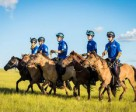 The 2014 Mongol Derby starts August 6th.