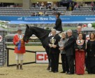 Beezie Madden and Cortes 'C' captured the $250,000 Canadian Pacific Grand Prix CSI4*-W at the National Horse Show.