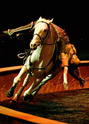 Odysseo by Cavalia will return to Toronto next spring, starting in April.
