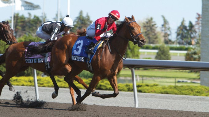 Thumbnail for 2011 Sovereign Awards: Champion Three-Year-Old Filly Inglorious