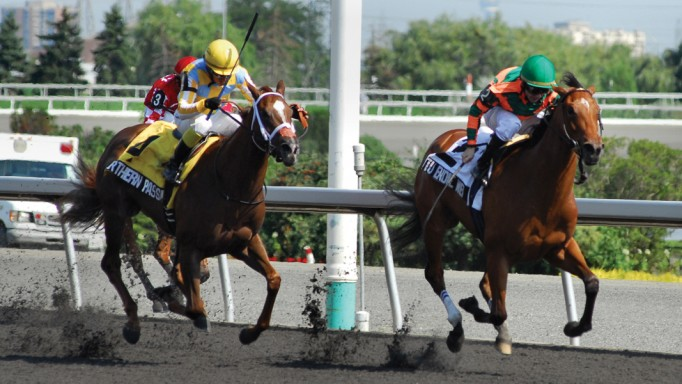 Thumbnail for 2011 Sovereign Awards: Champion Two-Year-Old Filly Tu Endie Wei