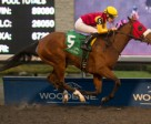 Emma-Jayne Wilson guides London Tower to victory for owner and trainer Steve Owens in the $150,000 Ontario Lassie Stakes at Woodbine. Photo by Michael Burns Photography