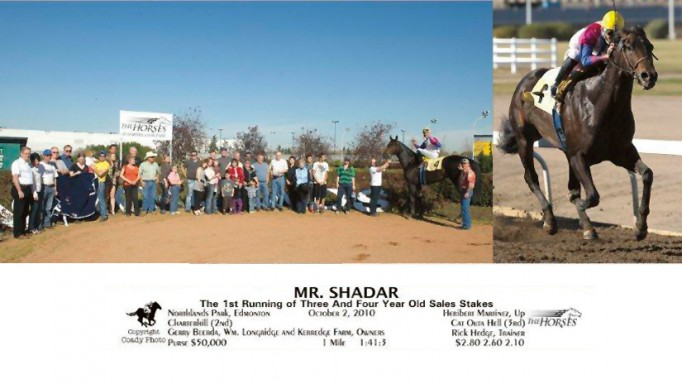 Thumbnail for Alberta Syndicates: A Great Way to Get Involved in Thoroughbred Ownership