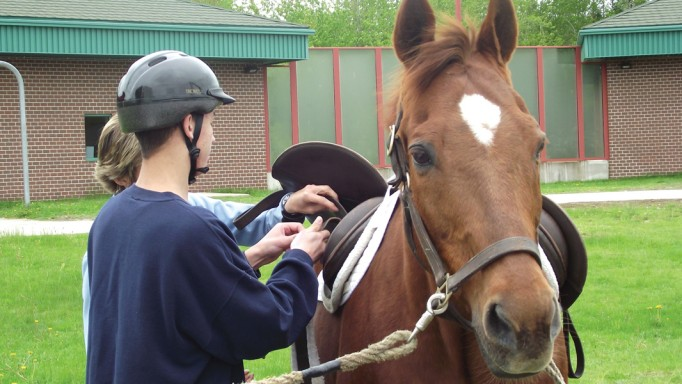 Thumbnail for Behind The Walls: Horses helping troubled youths