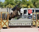 Asta Torokvei and Riverdale won the Beval Palm Beach Adult Medal at the Winter Equestrian Festival. Photo by Sportfot