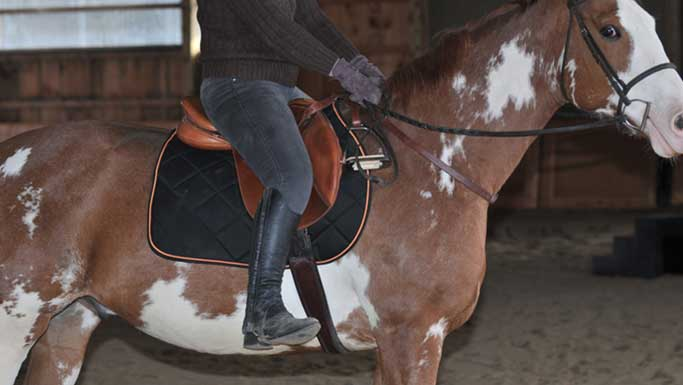 Thumbnail for Get Balanced: Riding Without Stirrups