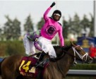 Filly Lexie Lou named Canada's 2014 Horse of the Year. Photo by Michael Burns