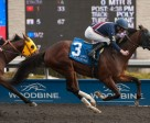 U S Marshal, piloted by jockey David Moran, won the $102,800 Wando Stakes, at Woodbine. Photo by Michael Burns Photography