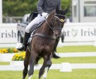 Australia's Sam Griffiths and Favorit Z who are currently in first place in the Irish Field CCI3* at the Tattersalls International Horse Trials & Country Fair