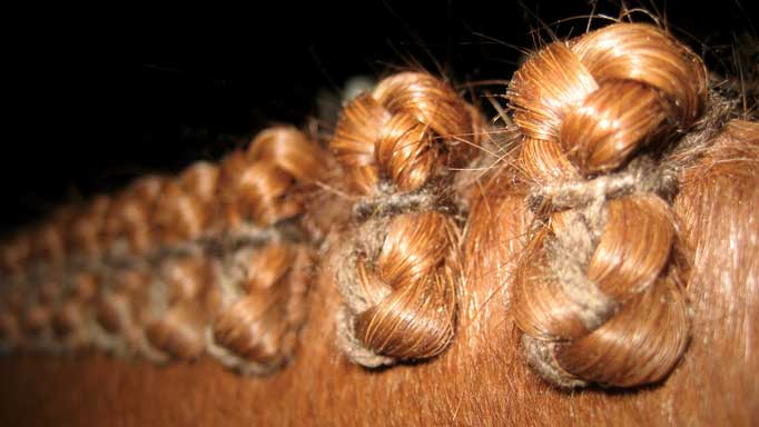 Thumbnail for The Perfect Braid Job