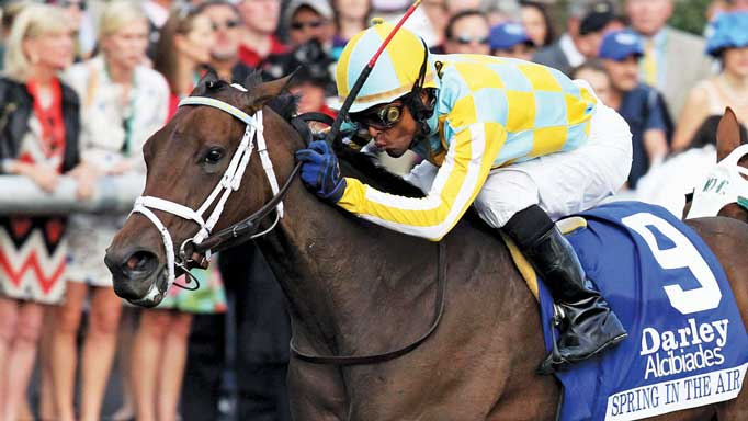Thumbnail for 2012 Champion Two-Year-Old Filly – Spring in the Air