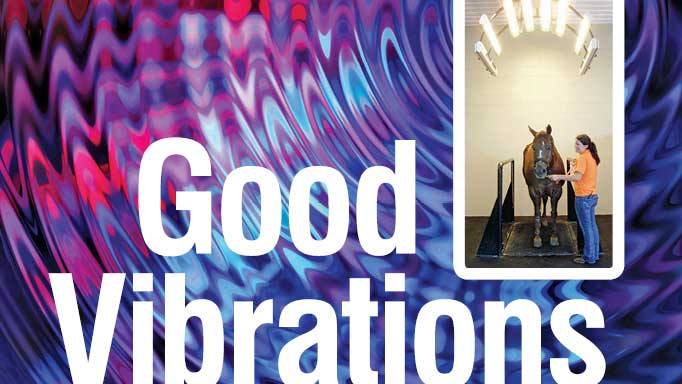 Thumbnail for Good Vibrations