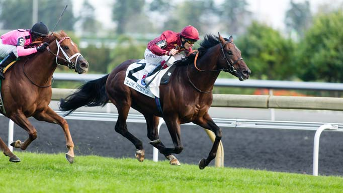 "Thumbnail for 2014 Ricoh Woodbine Mile: Rider on the ""Storm"""