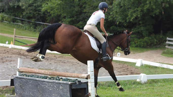 Thumbnail for Developing the Young Event Horse with Gwen and Kendal Lehari