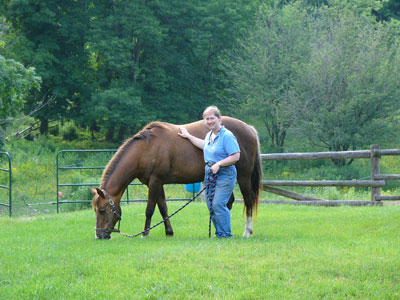 Gayle Ecker, director of Equine Guelph, has been awarded the prestigious Equine Industry Vision Award for 2015.