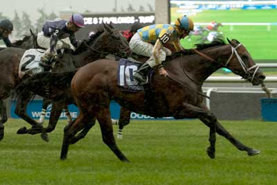 Lockout, ridden by Gary Boulanger, won the $212,800 Grade 2 Connaught Cup, at Woodbine. Photo by Michael Burns Photography