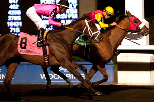 London Tower won the $125,400 Eternal Search Stakes at Woodbine under Gary Boulanger. Photo by Michael Burns Photography