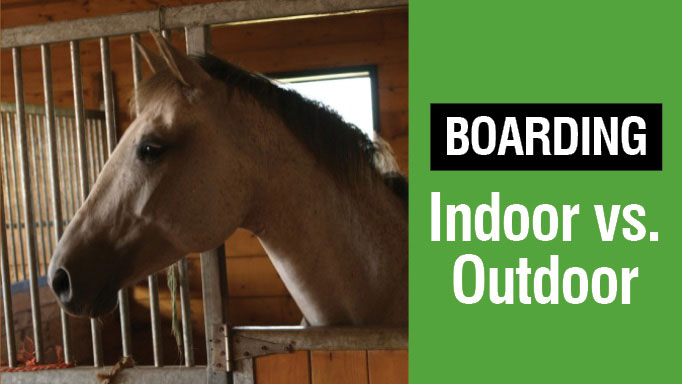Thumbnail for Outdoor vs Indoor Boarding