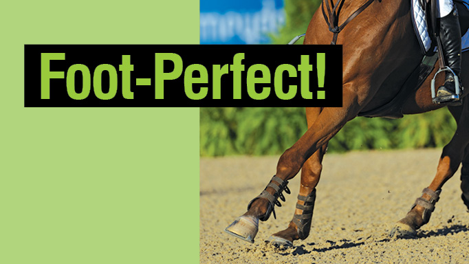 Thumbnail for Foot Perfect