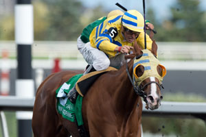 Eurico Da Silva guides Goodoldhockeygame to victory in the $125,000 Overskate Stakes at Woodbine. Photo by Michael Burns Photography