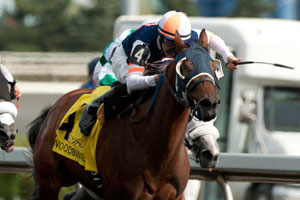 Jesse Campbell guides Midnight Miley to victory in the $125,000 La Lorgnette Stakes at Woodbine. Photo by Michael Burns Photography