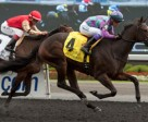 Luis Contreras (#4) guides Gamble's Ghost to victory in the $150,000 Mazarine Stakes. Photo by Michael Burns Photography