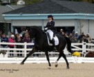 Mikala Gundersen and My Lady won the FEI Grand Prix Freestyle at Dressage at Devon. Photo by Hoof Prints Images