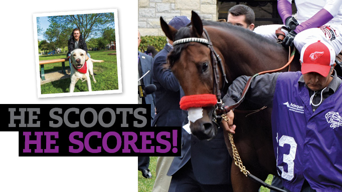 Thumbnail for He Scoots, He Scores!