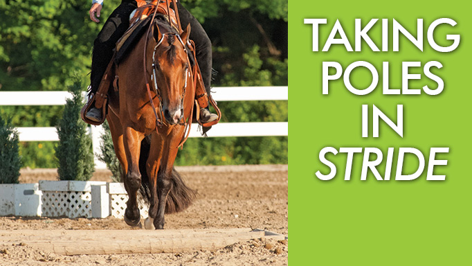 Thumbnail for Taking Poles in Stride