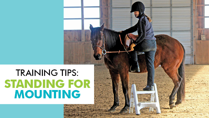 Thumbnail for How Can I Get My Horse to Stand Still for Mounting?