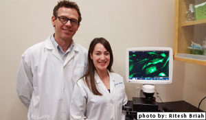 Microscope with screenshot of MSC cells adhering to plastic with Dr. Thomas Koch and PhD candidate Sarah Lepage.