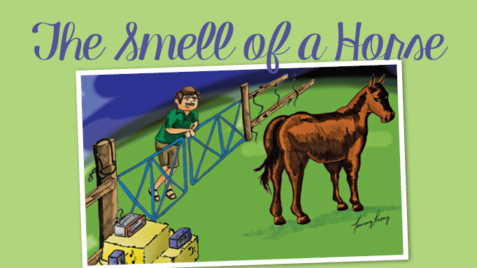 Thumbnail for The Smell of a Horse