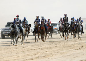 Emirates Equestrian Federation photo
