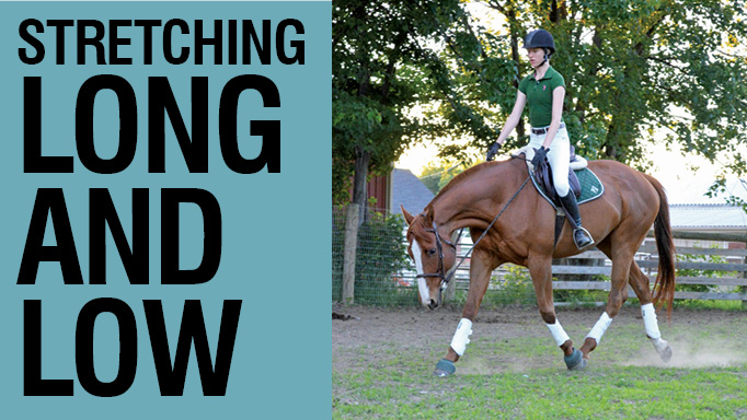 Thumbnail for Stretching Long and Low with Hyde Moffat
