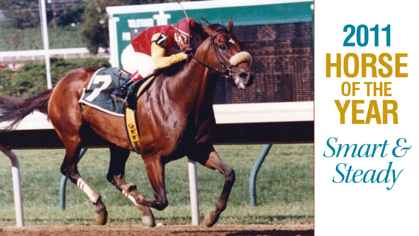 Thumbnail for 2011 Horse of the Year: The pedigree of Never Retreat: Smart and Steady